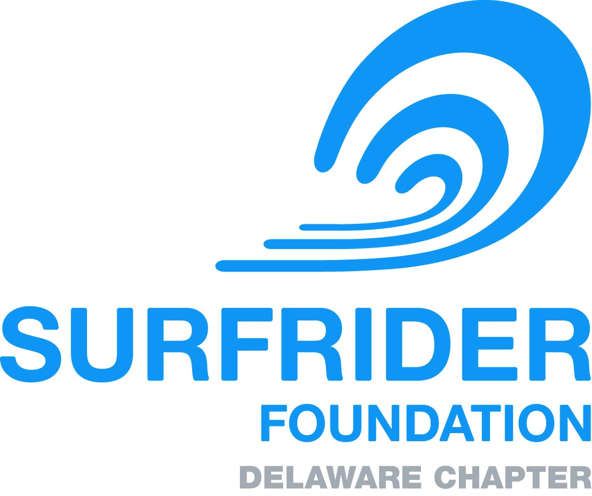 Celebrate ISD with FREE Surf Lessons!