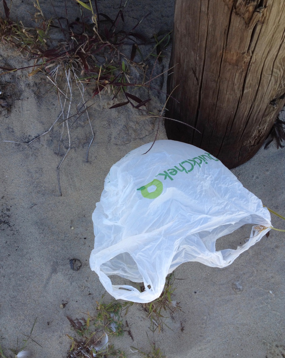 Call or Email to Limit Plastic Bag Use in DE